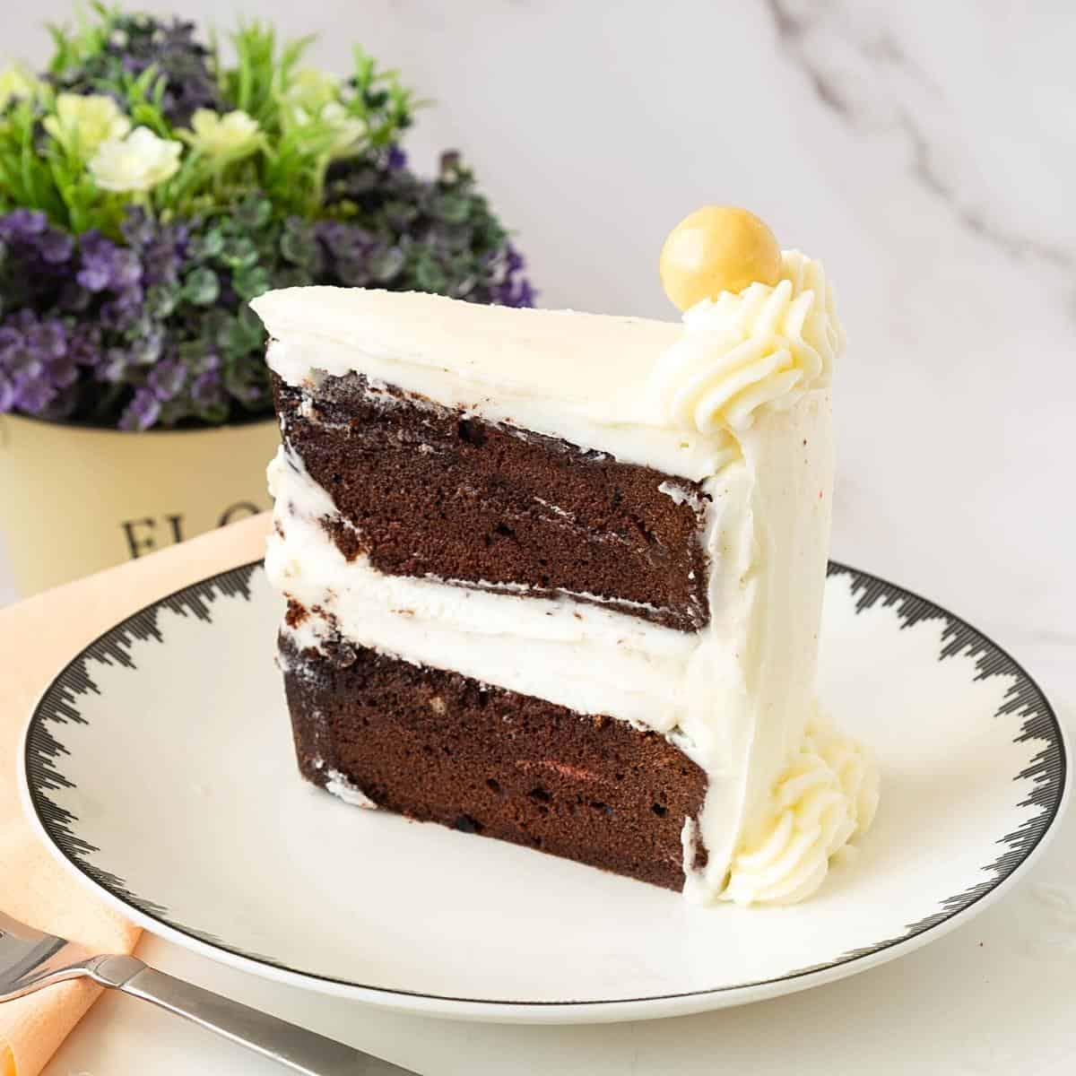 Chocolate sponge cake on a plate.