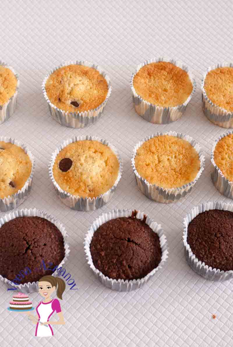 Rows of vanilla and chocolate cupcakes.