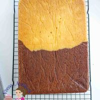Chocolate Vanilla Sheet Cake - Half and Half Recipe - Video Recipe