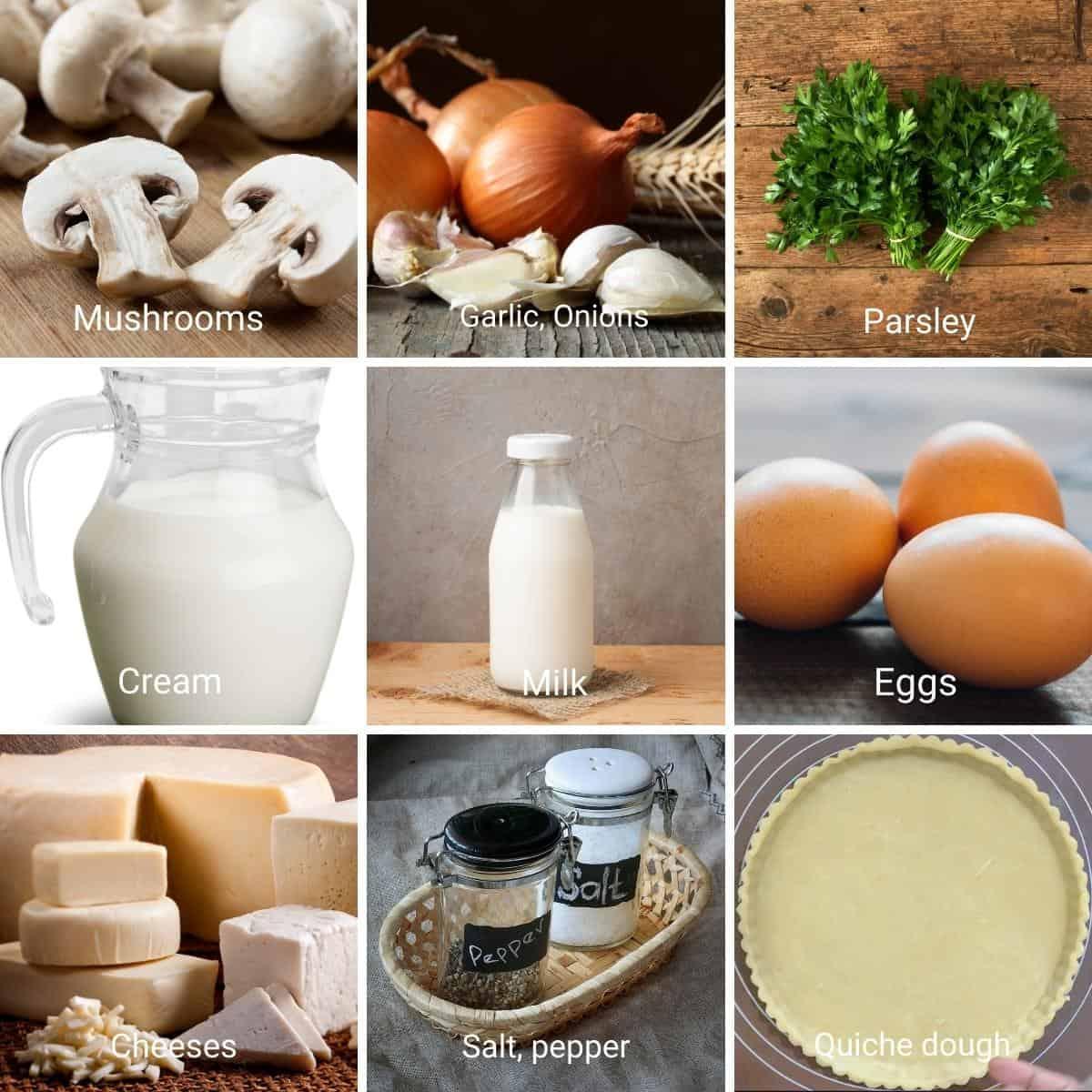 Mushrooms quiche Ingredients shot collage.