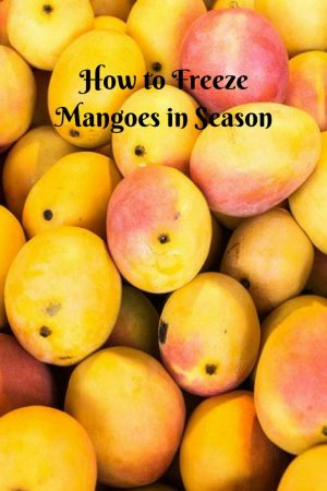 How to Freeze Mangoes – to use off season