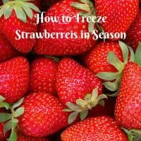 How to freeze Strawberries? Strawberries are great treat to have any time of the year but they are only available fresh for a very small season. Instead of using fresh or canned here's a simple way to freeze them so you can use a few at time during the year. You will never have to buy store bought frozen strawberries again.