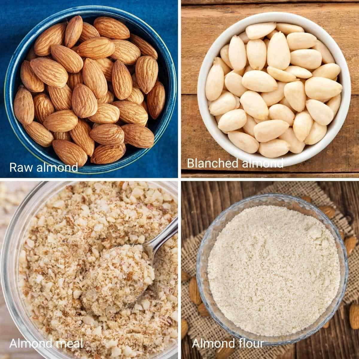 Collage of almonds and almonds meal and flour.