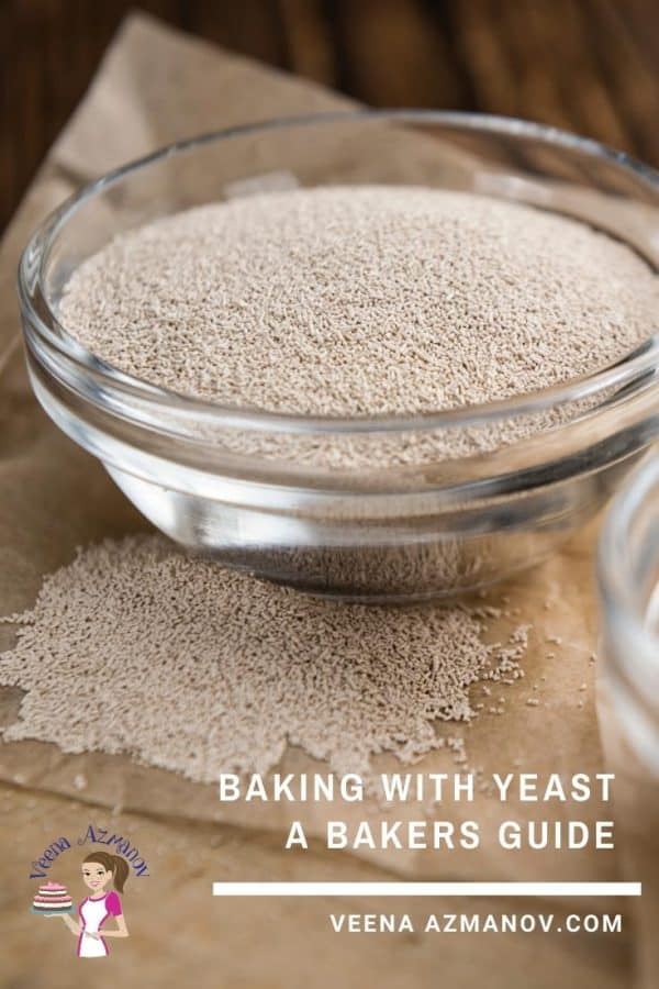 Everything you need to know about yeast and baking bread with yeast