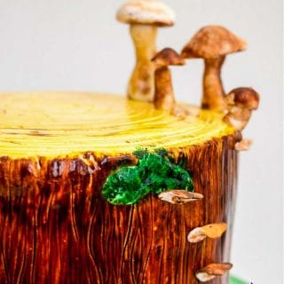 A cake decorated to look like a tree stump.