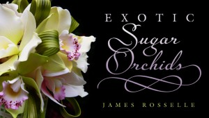 Sugar Orchids