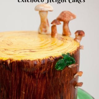 Tall Cakes or Extended Height Cake
