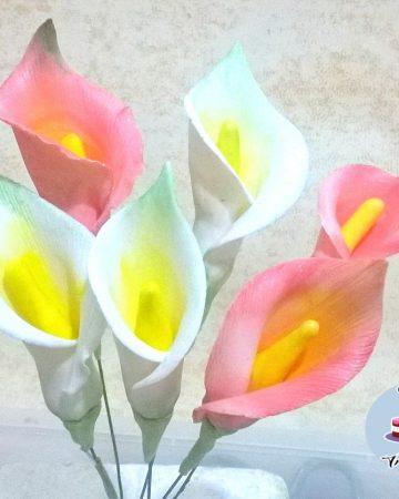 Sugar Lilies.