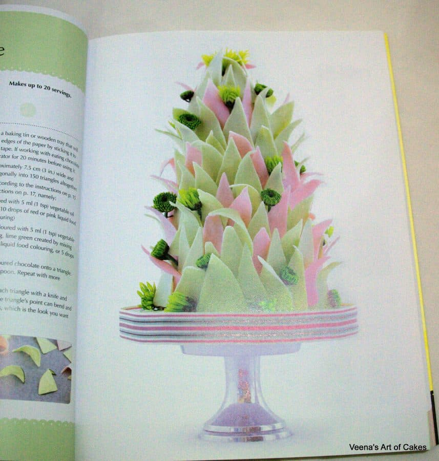 A photo of a book page featuring a decorated cake.