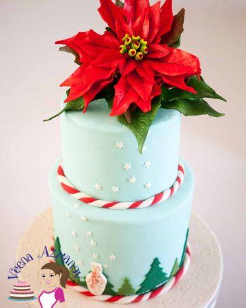 A Christmas theme cake with a sugar poinsettia flower on top.