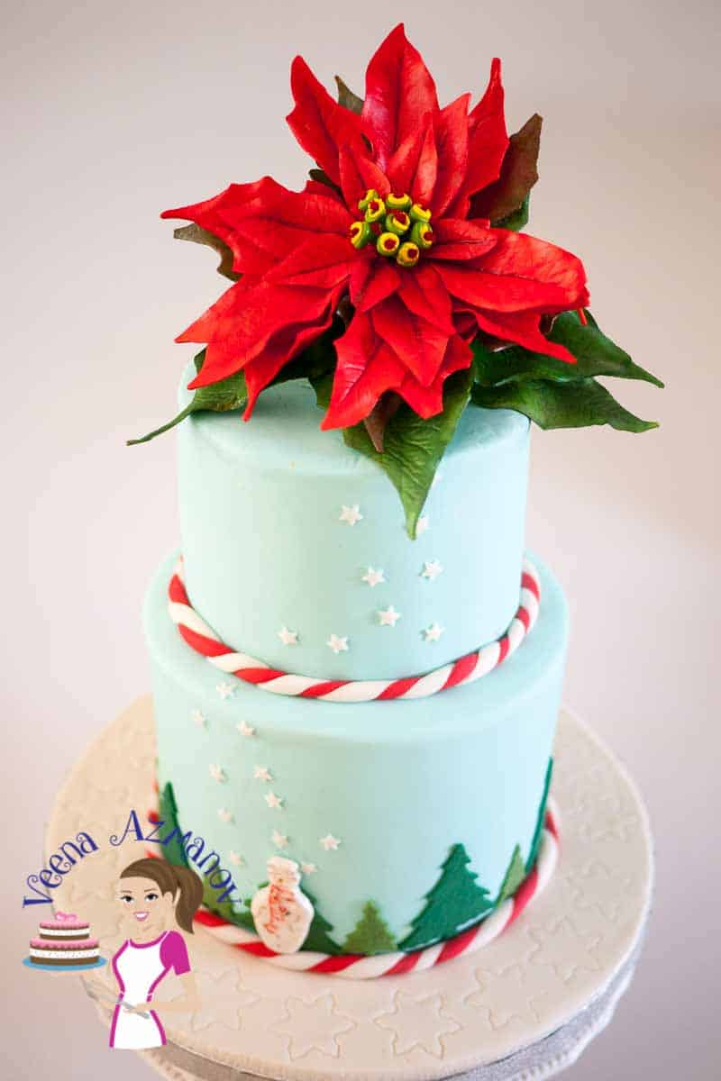 A Christmas Cake with Sugar Poinsettia ! Nothing says Christmas Cake better than adorned with a Sugar Poinsettia does it? Made this simple Christmas Cake with a single poinsettia on too for that ultimate Christmas wow factor.