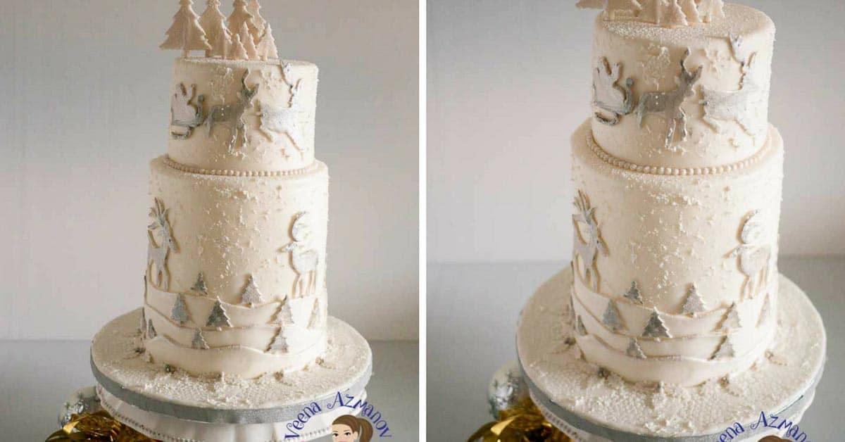 A Christmas theme wedding cake.