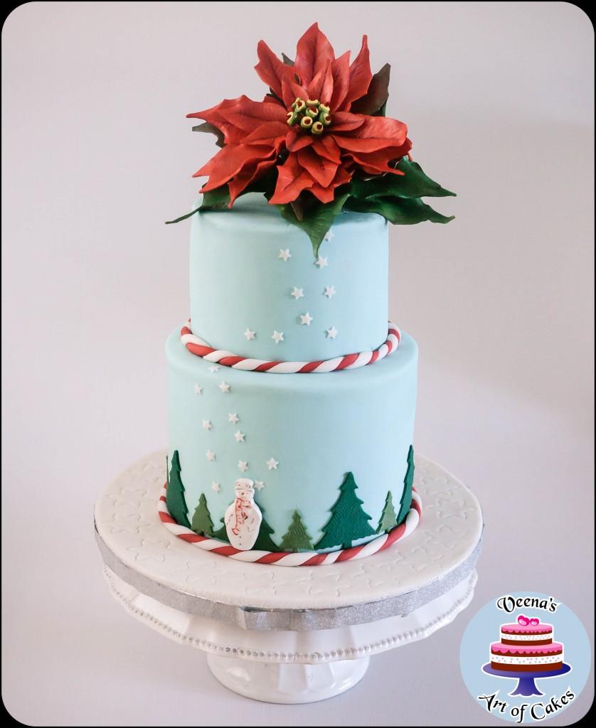 Teal Christmas Cake-1