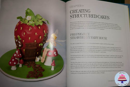 A photo of a cake decorating book page.