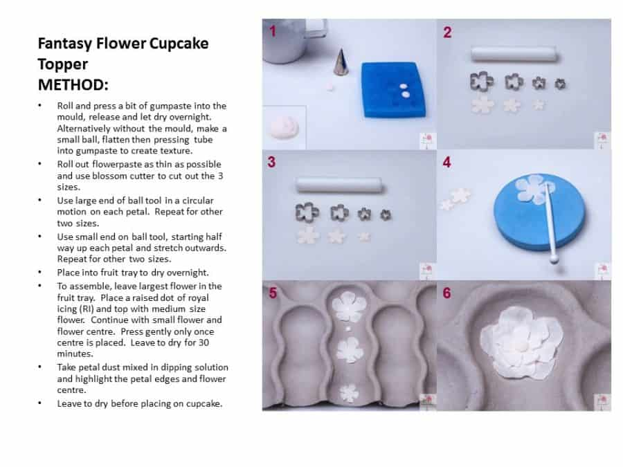 A photo of a page from a cake decorating book.