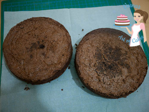 two round chocolate cakes.