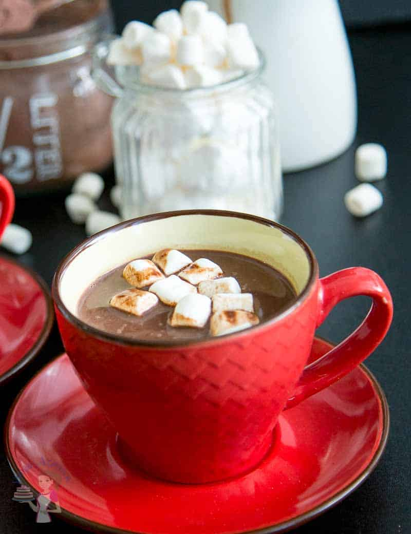 A cup of marshmallow topped hot chocolate recipe - featuring this drink would make a perfect mothers day treat to a mother.