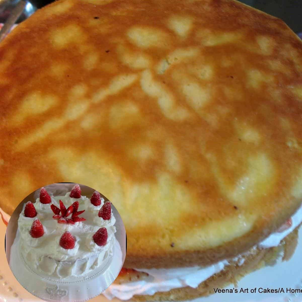 A cake frosted with whipped cream.