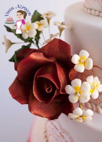 A close up of a sugar rose.