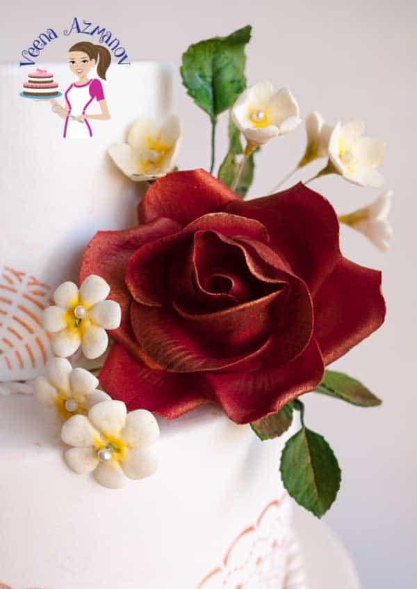 Burgundy Stenciled Wedding Cake With Vintage Roses Veena Azmanov