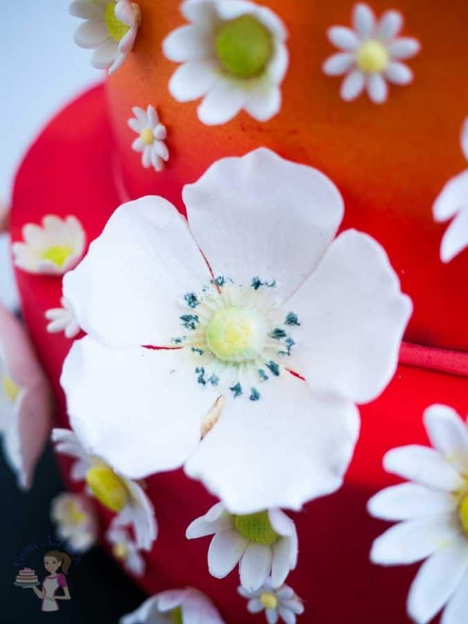 A close up of a gum paste flower.