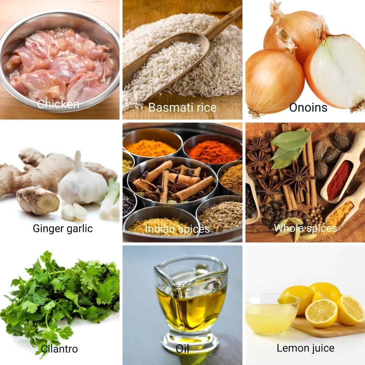 Ingredients collage for chicken biryani.