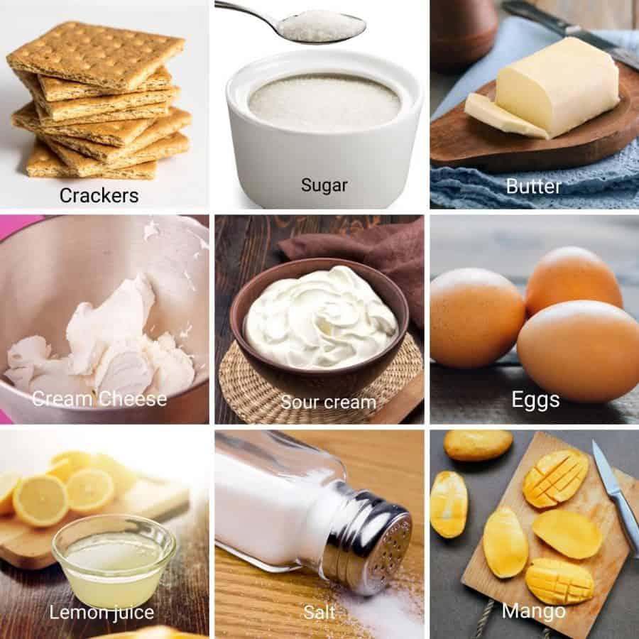 Ingredients shot for mango cheesecake.