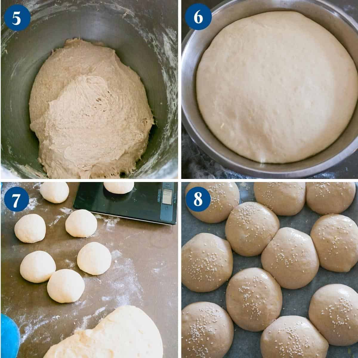 Progress pictures collage for burger buns with whole wheat.