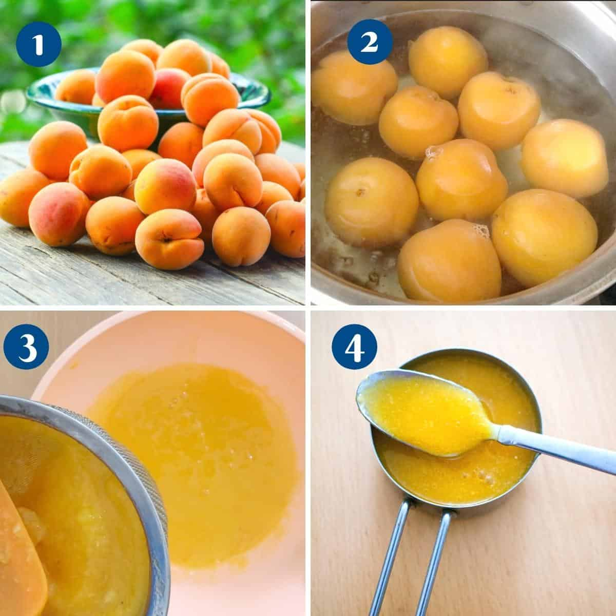 Progress pictures making apricot puree.