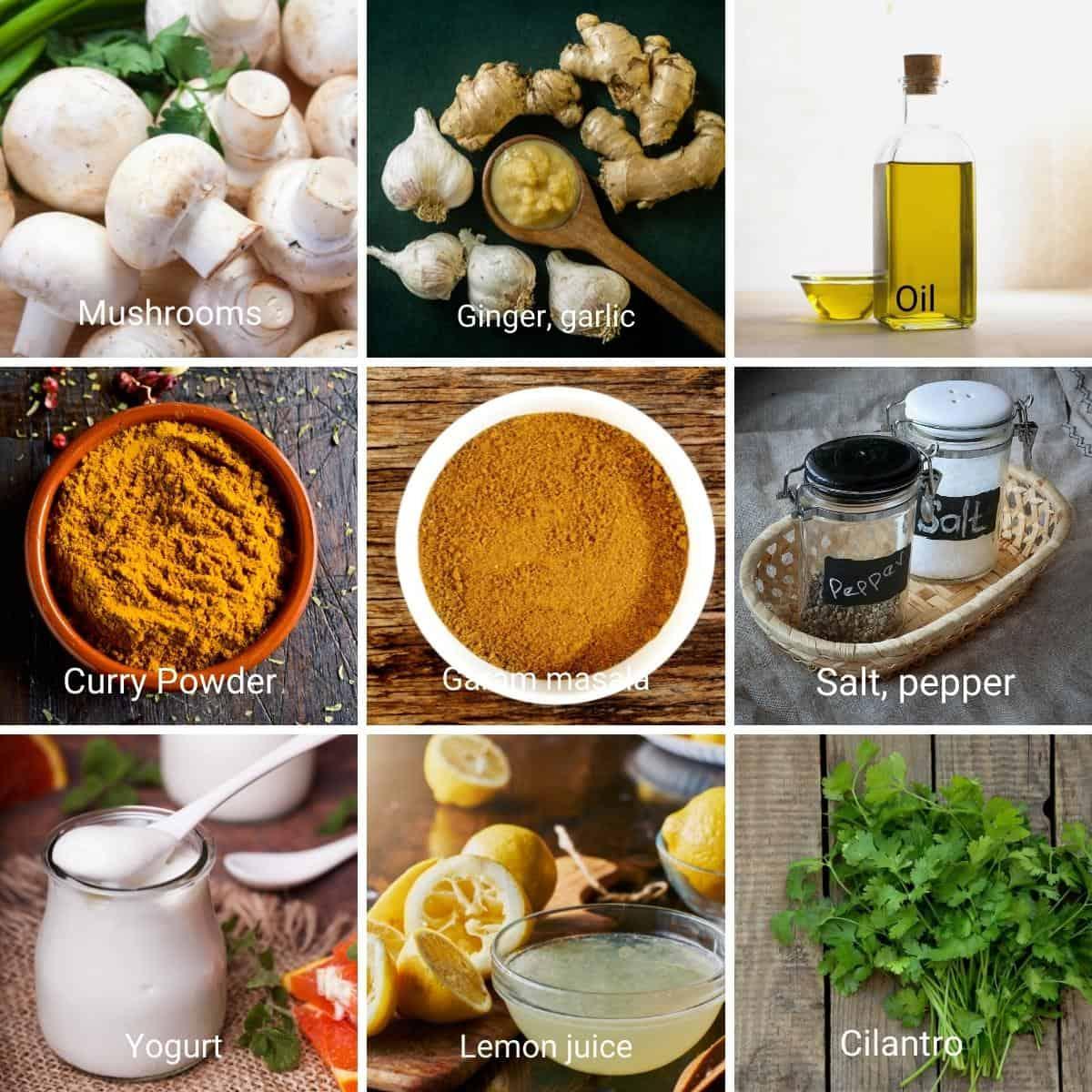 Ingredients shot collage - Mushroom masala.