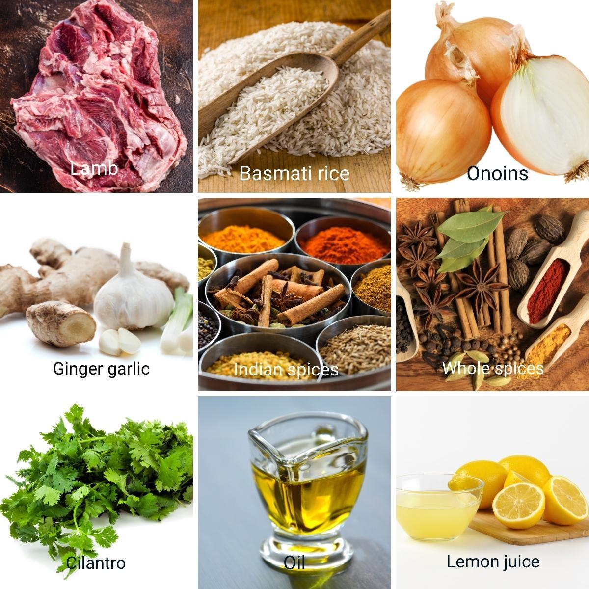 Ingredients for lamb biryani.