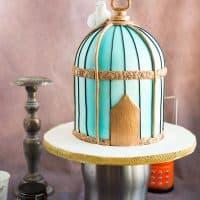 How to make a Birdcage Cake