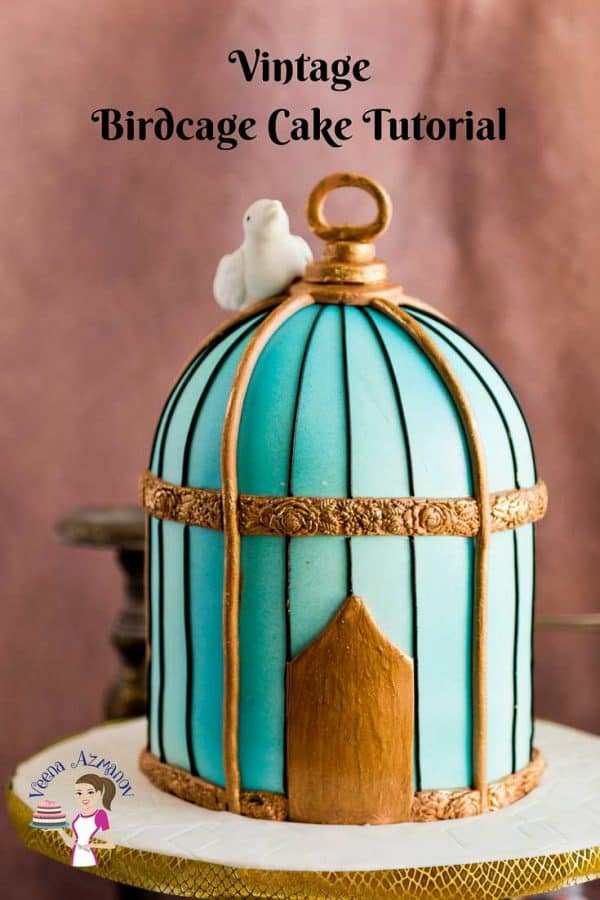 A close up of a birdcage cake.