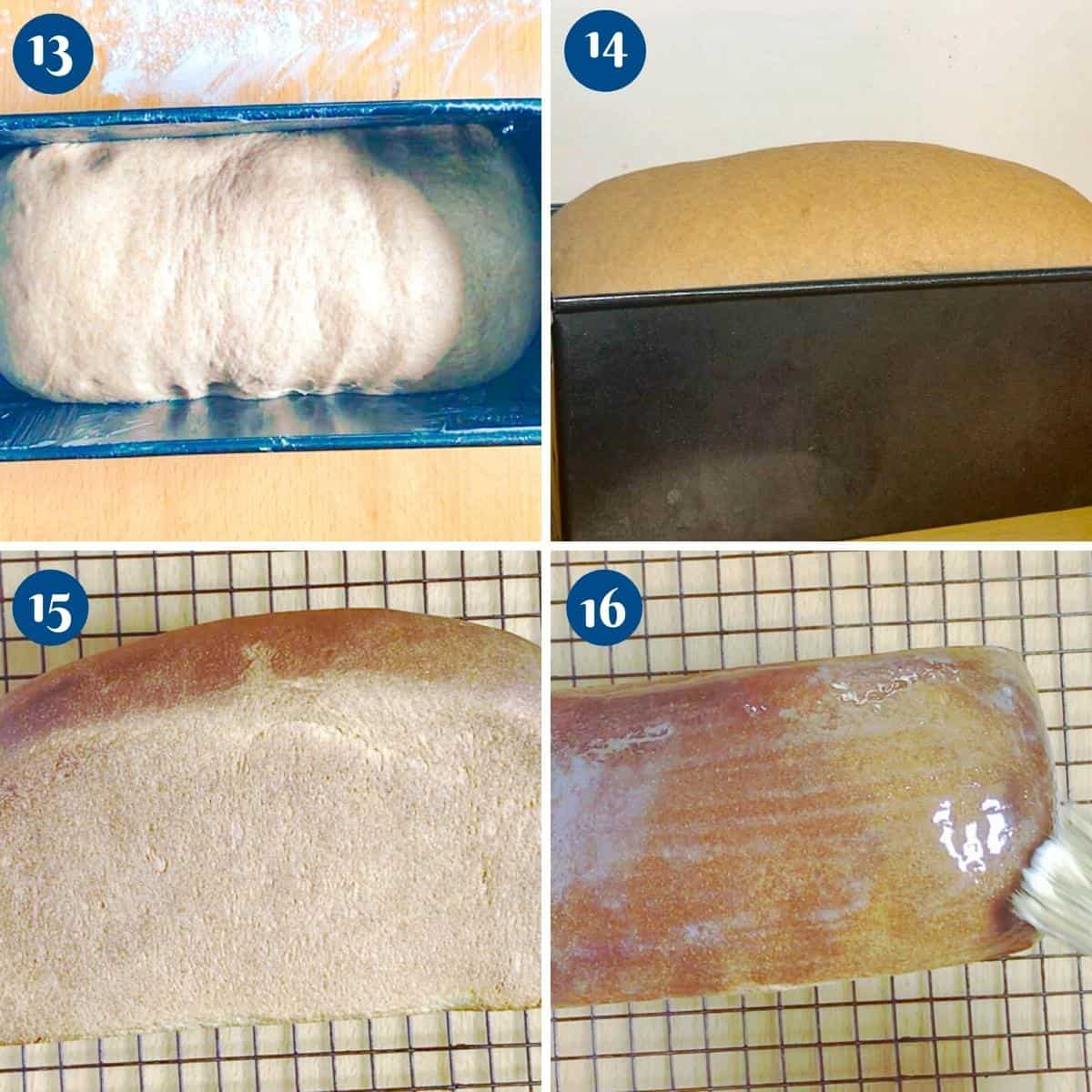 Progress pictures collage for baking the sandwich bread.