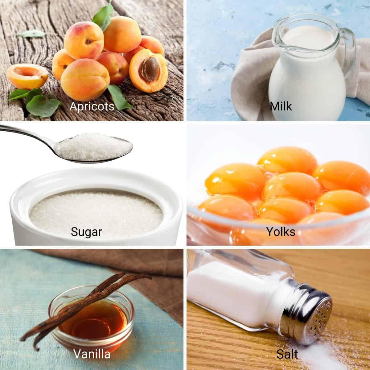 Ingredients for making apricot flan.