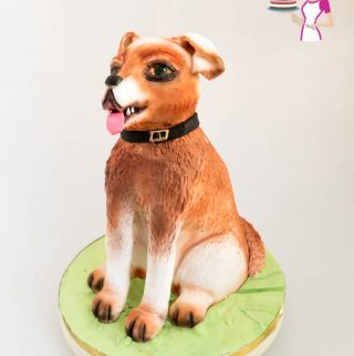 A image optimized for social sharing for this dog cake. A sitting dog birthday cake celebration.