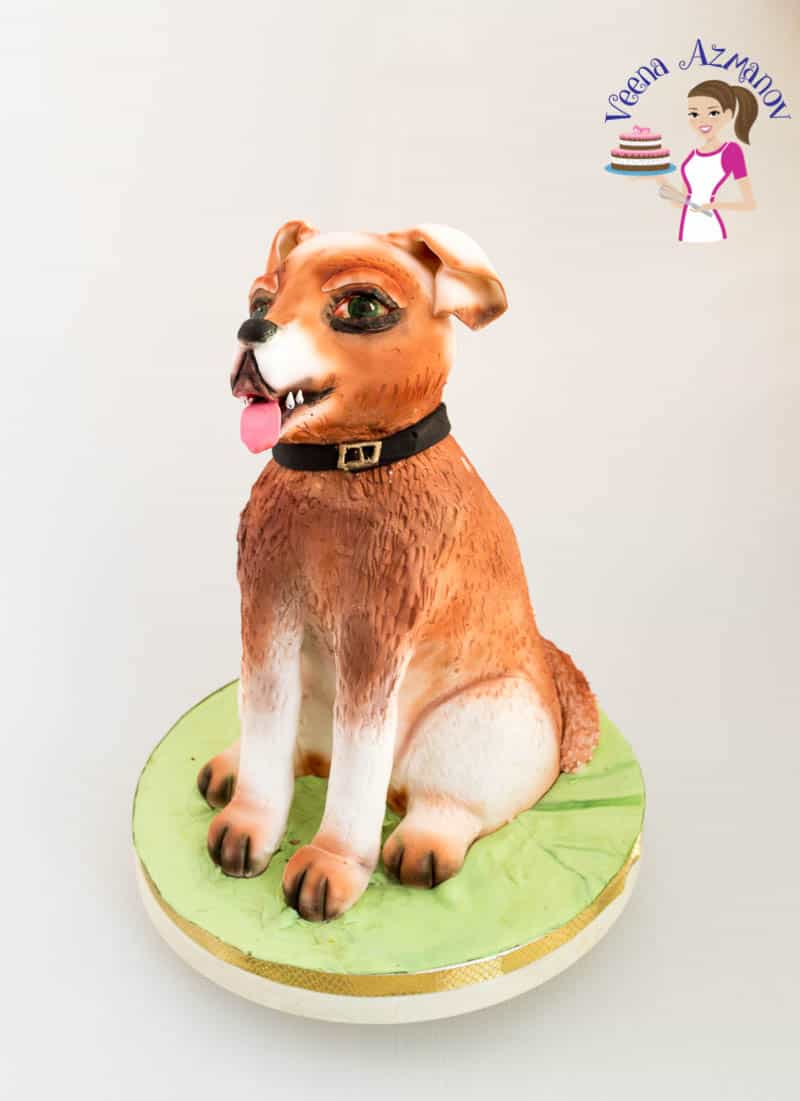 Sitting Dog Cake For My Aadis 11th Birthday Veena Azmanov