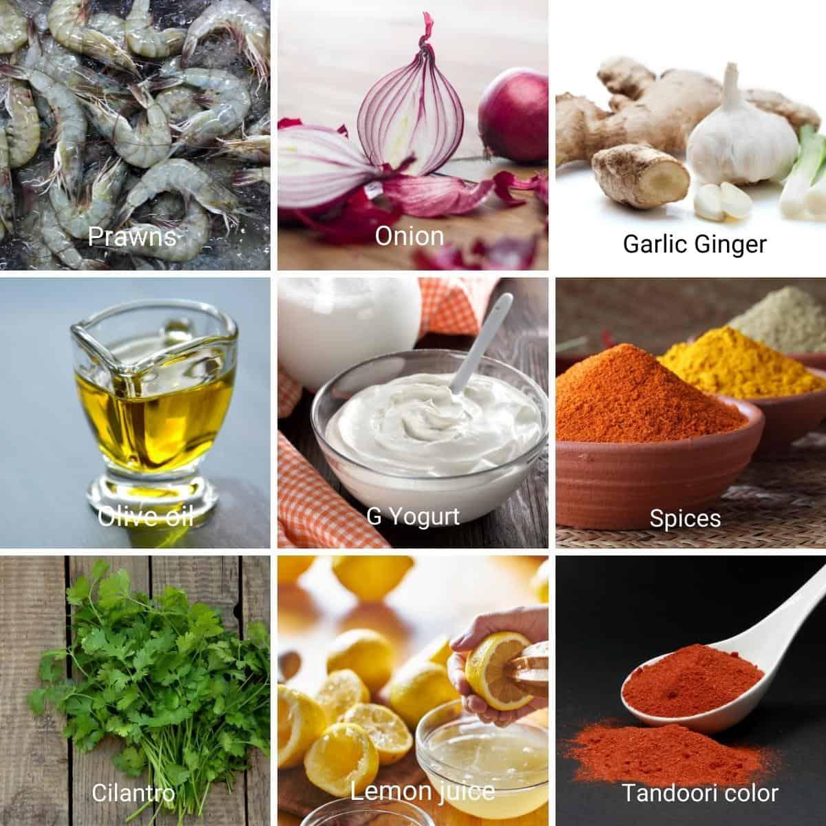 Ingredients for making prawn masala with tandoori marinade