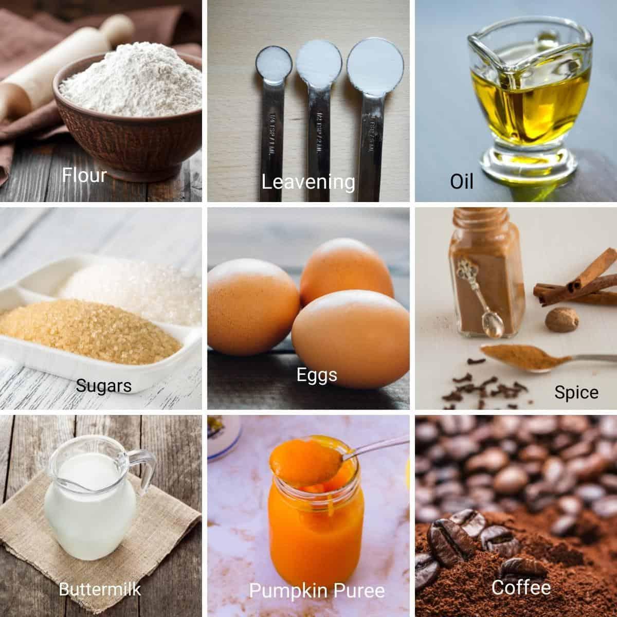 Ingredients for pumpkin spice latte cake.