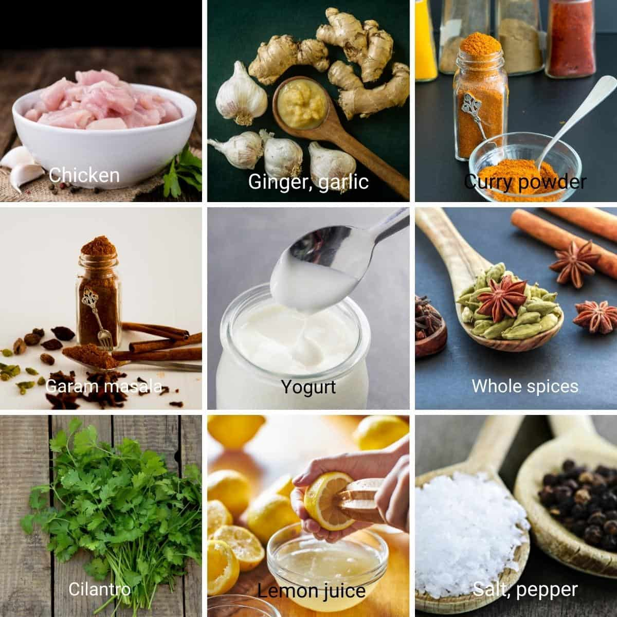 Ingredients collage for chicken curry in instant pot.