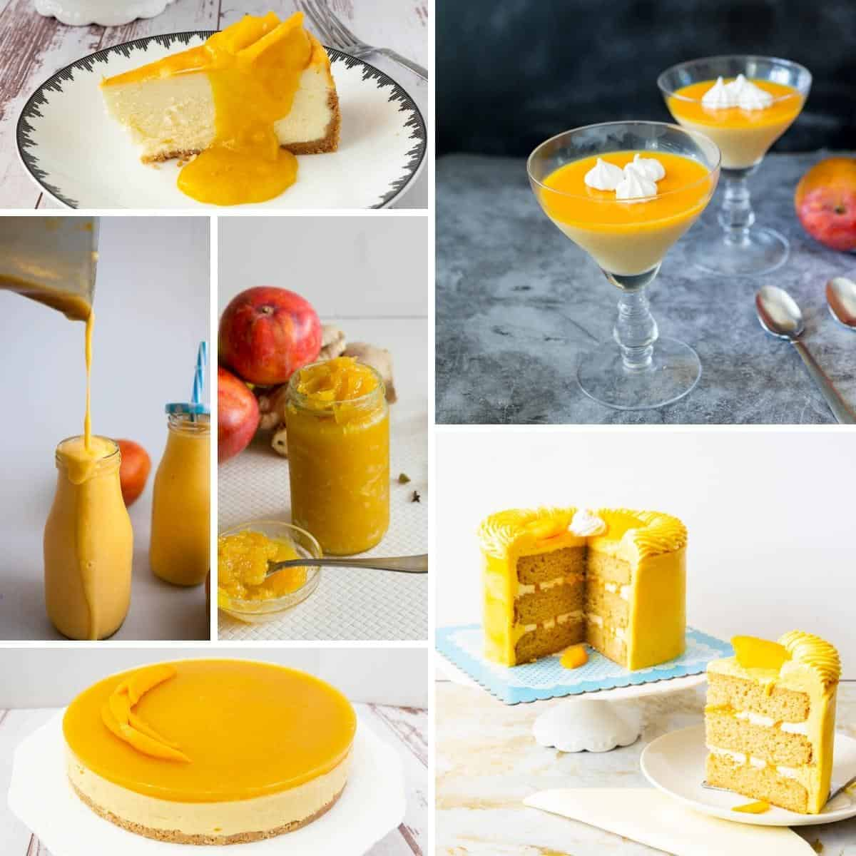 Collage of mango recipes to try this summer.