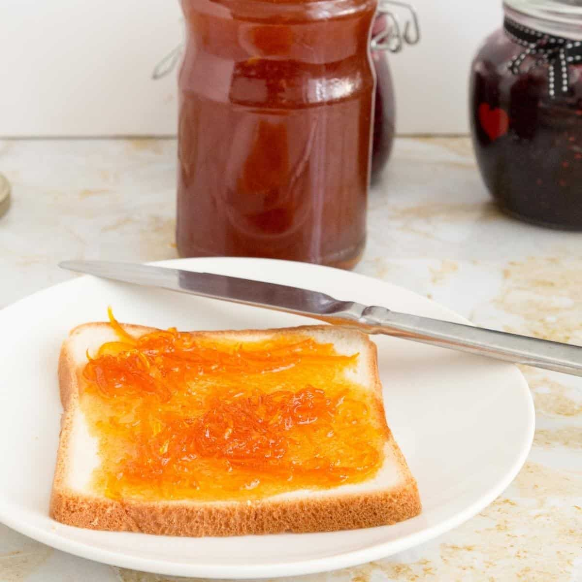 A slice of bread with confiture d'orange.