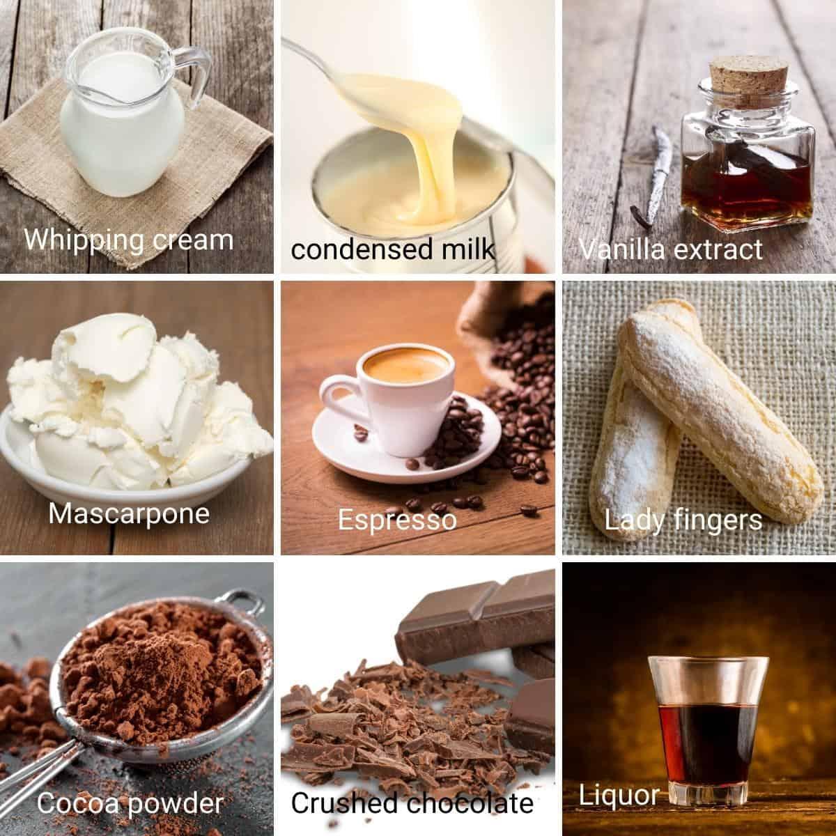 Ingredients shot tiramisu ice cream.