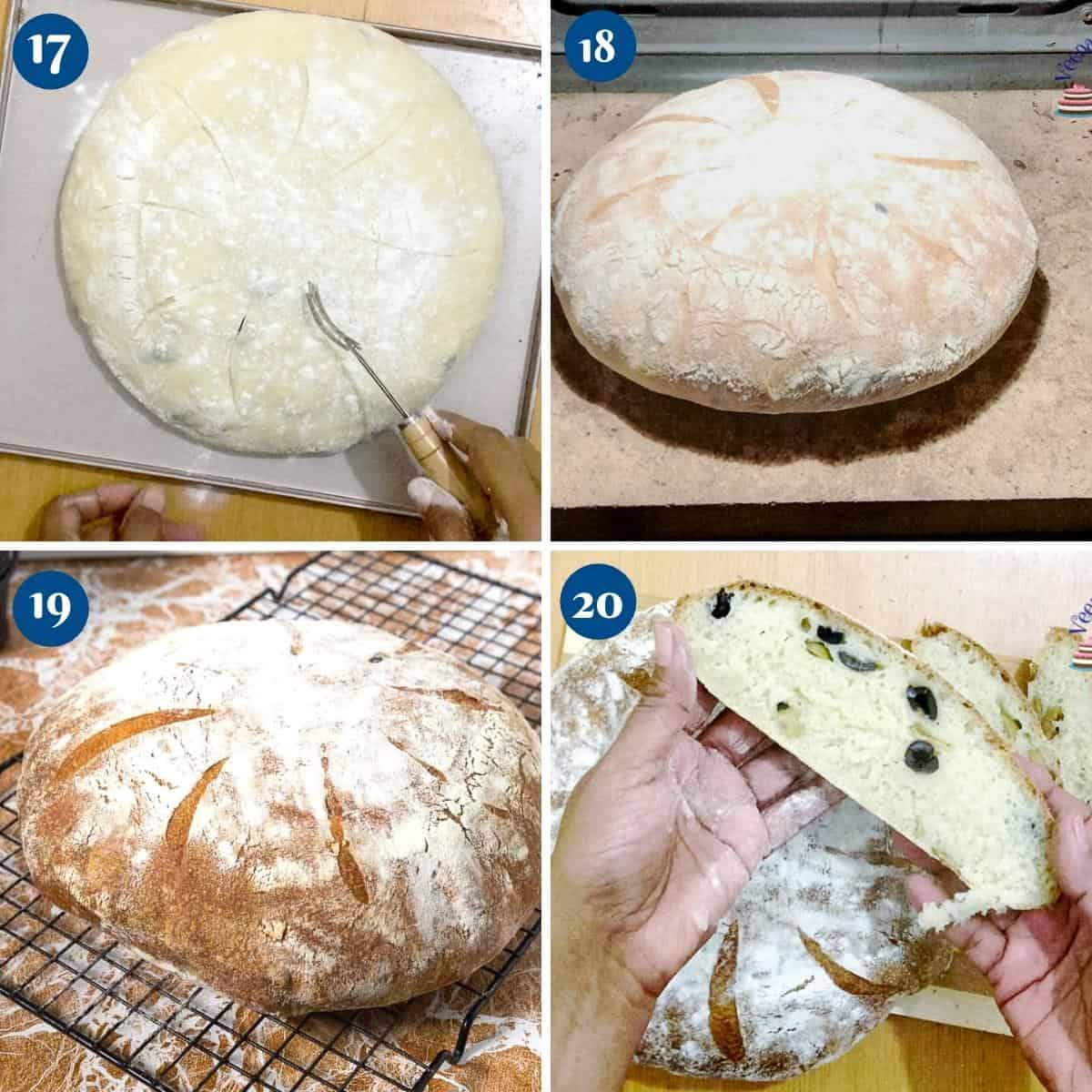 Progress pictures collage for no knead beer bread.