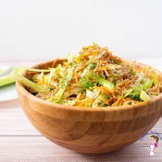 Homemade Salad with Asian dressing