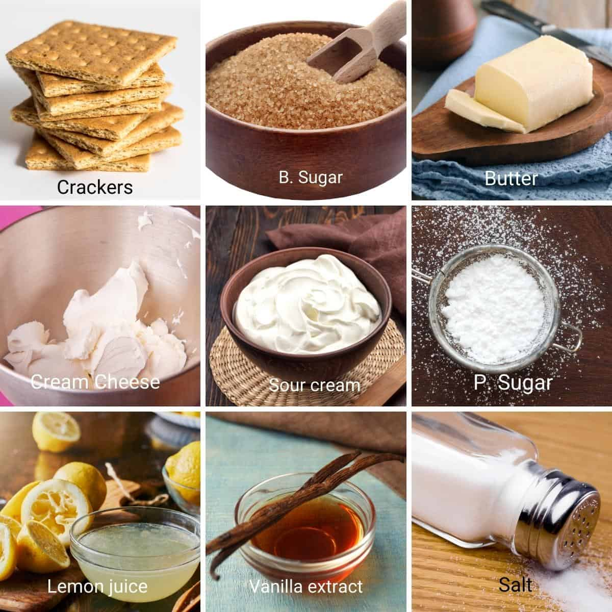 Ingredients shots for Frozen ice cream cheesecake.