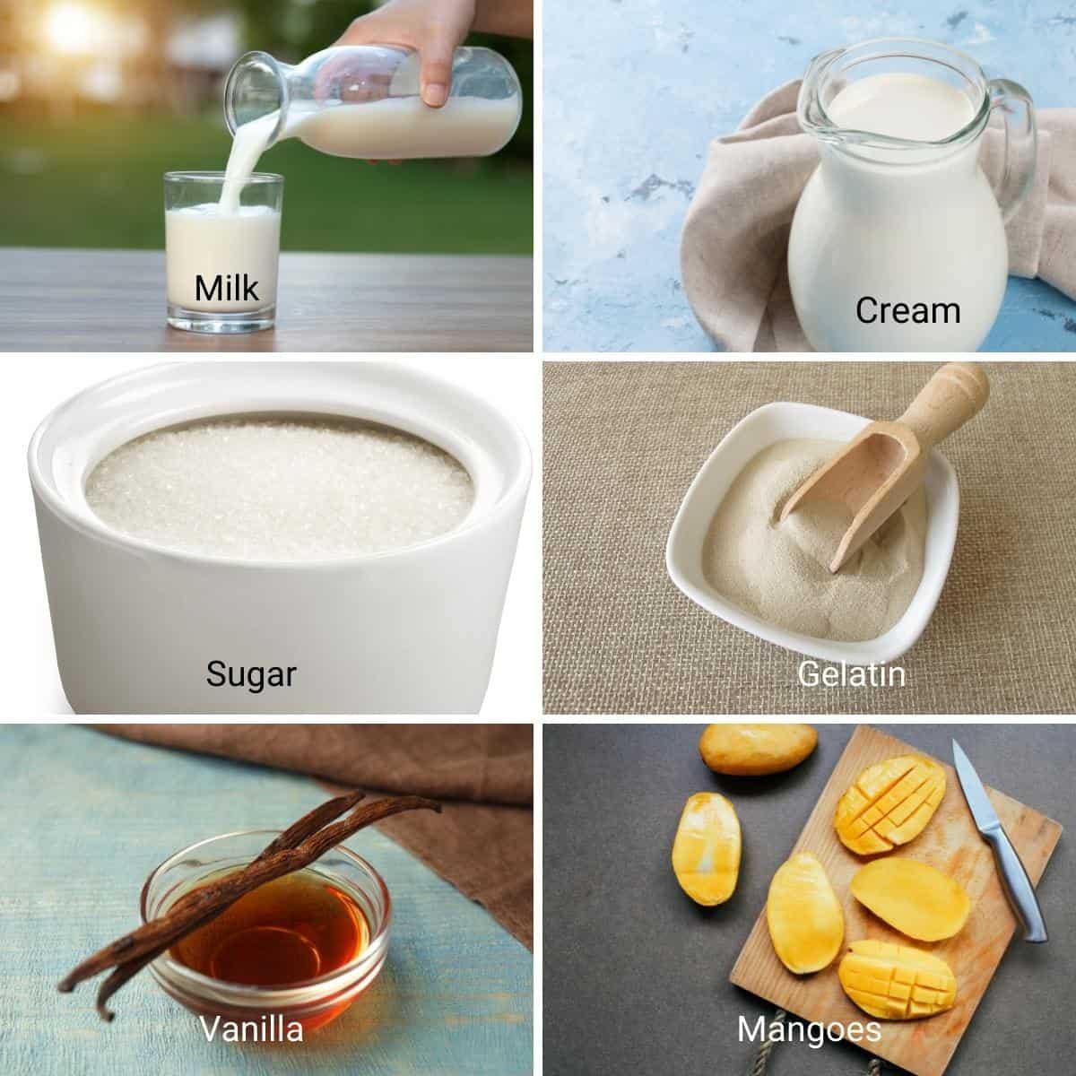 Ingredients to make mango panna cotta.