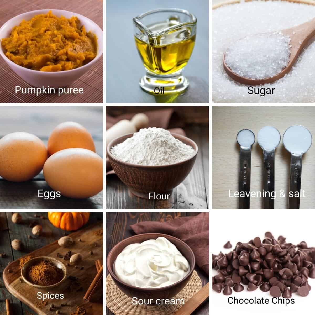 Ingredients for pumpkin cake with chocolate chips.