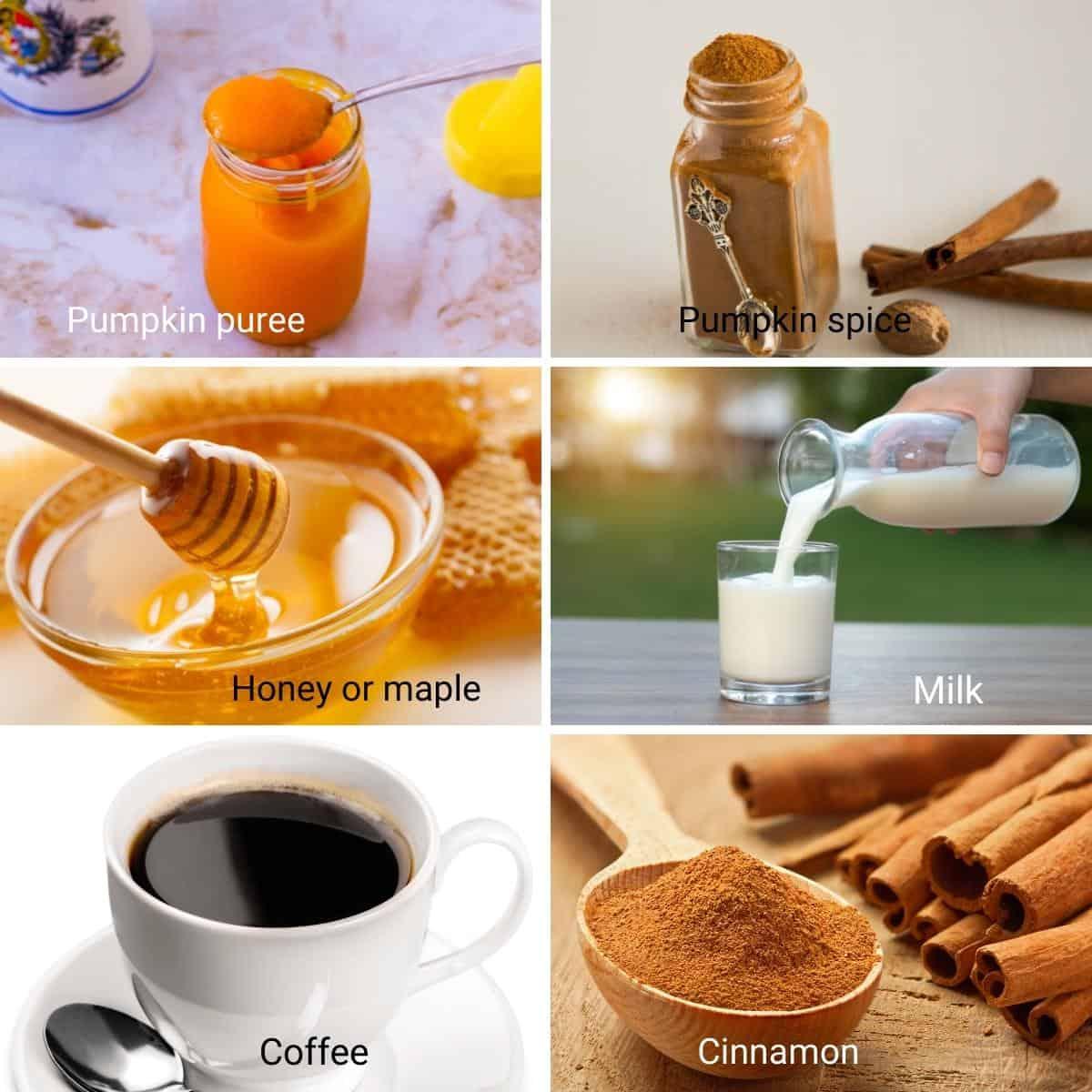 Ingredients for pumpkin spice latte.