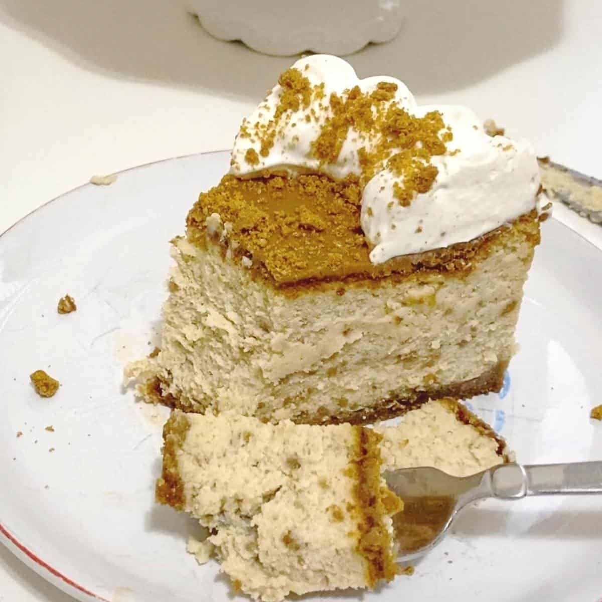 A slice and fork of cheesecake with biscoff.